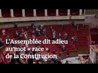 Le Mot Race Supprimé de La Constitution