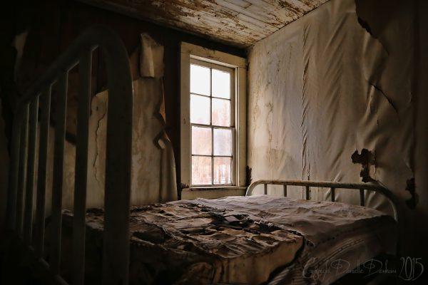 logements, insalubres, chambres, appartements, terribles, problèmes, insalubre, cafards, blattes, nuisibles,