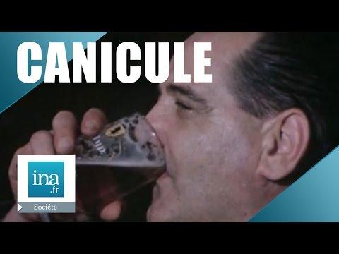 La Bière, Un Vrai Remède Contre Le Chaud !