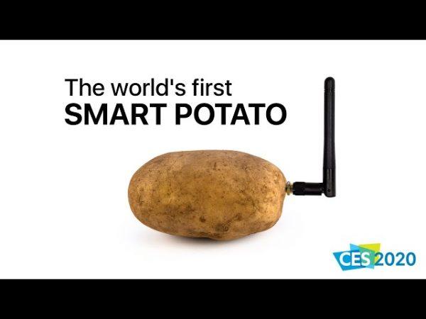 Patate Connectée et Autres Inventions Loufoques!